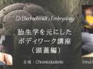 胎生学ボディワーク講座(頭蓋編)