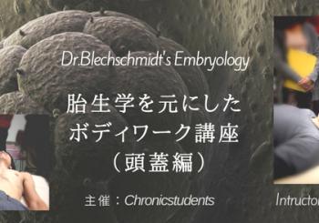 胎生学を元にしたボディワーク講座